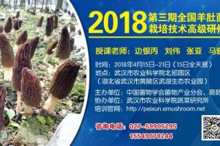 2018第三期全国羊肚菌栽培技术高级研修班