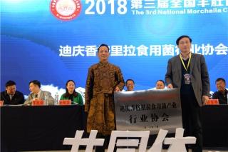 迪庆香格里拉食用菌产业行业协会授牌仪式 (4)