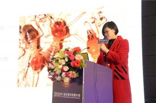 蔡英丽:羊肚菌病虫害发生规律及防治技术 (4)
