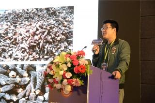 张亚:差异化的生产方案对羊肚菌产业化的推进 (4)
