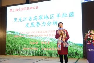 倪淑君:黑龙江省资源丰富 具有发展羊肚菌的良好优势