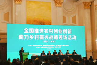 """四川金堂打造农村创新创业""""六个一""""模式"""