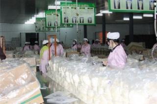眾興菌業定增17.63億 完善食用菌產業鏈