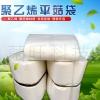 平菇栽培袋 平菇出菇 袋装袋机袋子 betvlctor伟德菌袋