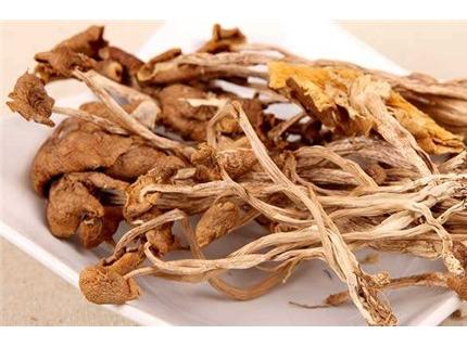 茶树菇煮前要泡吗?茶树菇煮多久才熟