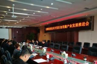 贵州安顺开发区食用菌产业发展推进会议召开