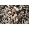 急需求购:香菇腿(月需3-5吨)