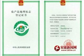 """宁陕天麻、猪苓获得农产品""""国字号""""地理标志登记证书"""