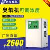 供应四川食用菌培养室臭氧消毒机 20g 臭氧发生器 空间灭菌