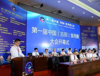 中国商务新闻网:竞争白热化 消费者为王