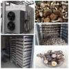 国信香菇烘干机工艺,食用菌烘干机设备,竹荪烘干设备