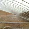 食用菌温室,羊肚菌温室,香菇温室等