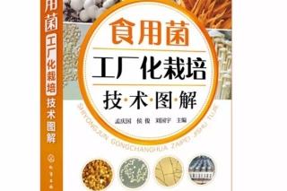 【易菇优选】八月新书《betvlctor伟德工厂化栽培技术图解》