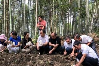 广西自治区农技推广总站组织专家到融水县开展食用菌产业调研 ()