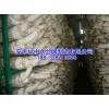 出菇架厂家香菇出菇架子食用菌架子蘑菇网片绿色铁丝网