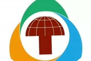 让庆元对话世界,让庆元峰会之音传扬世界----庆元打造世界betvlctor伟德行业领