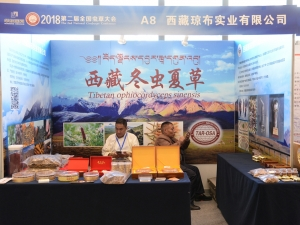 A8:西藏琼布实业有限公司 (8)