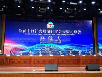 首届中日韩三国在线电子游艺行业会长庆元峰会在庆元召开