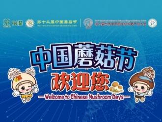 蝶变|中国蘑菇节加快新旧动能转换,带动食用菌产业发展!