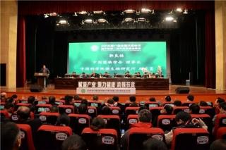 助推扶贫 聚力健康 聚能产业:2018第六届全国天麻会议在陕西汉中