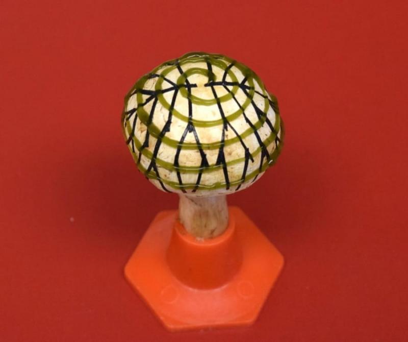mushroom-1-e1542334449719