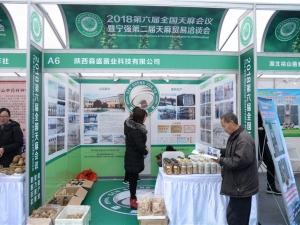A6 陕西森盛菌业科技有限公司 (6)