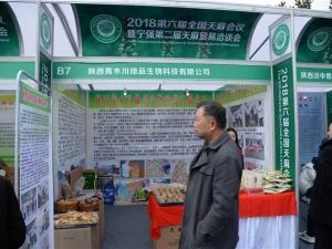 B7 陕西青木川绿品生物科技有限公司 (8)