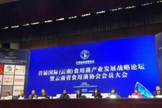 首届国际(云南)食用菌产业发展战略论坛暨云南省食