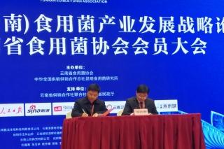 易菇网与云南省食用菌协会签订战略合作协议  将在宣传、会展、培训、电商领域进行深度合作 ()
