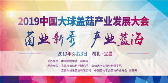 2019中国大球盖菇产业发展大会通知(第一轮)