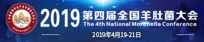 2019第四届全国羊肚菌大会