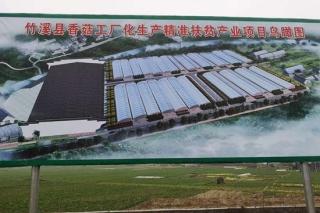竹溪:投资6500余万元 香菇工厂化生产精准扶贫产业项目正式开工