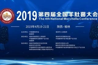 2019第四届全国羊肚菌大会通知(第一轮)