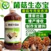 羊肚菌出菇刺激方法后茬出菇怎么补充营养提高产量
