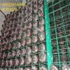 食用菌专用网架生产厂家