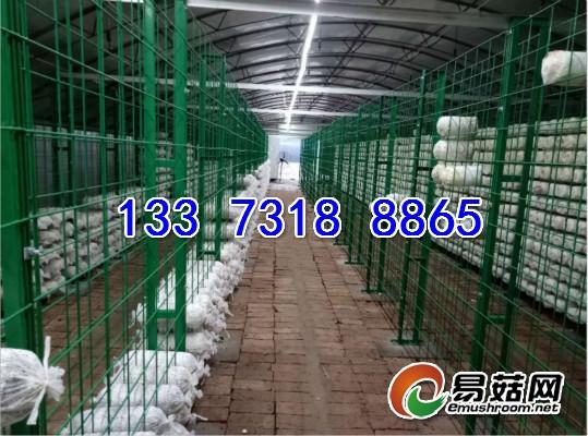 网架产品13373188865