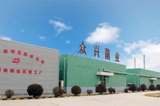 众兴菌业:食用菌生产基地将拓展至全国市场 ()