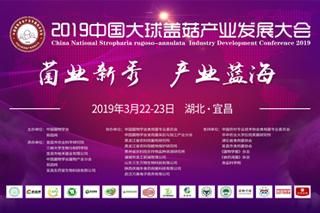 2019中國大球蓋菇產業發展