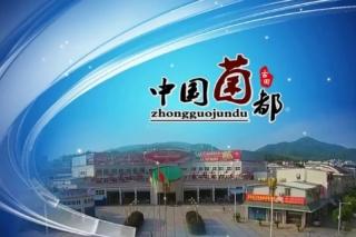 古田县与新华社联手在北京举办古田银耳推介会和新闻发布会