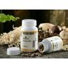 服用玉临风灵芝菇真菌多糖食用菌是您健康强体福音
