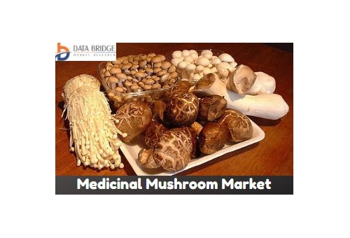 Global Medicinal Mushroom Market Forecas