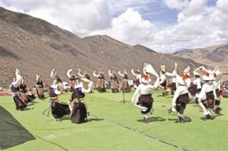 走进西藏当雄县2019年虫草文化旅游节 一边采挖虫草 一边品味民俗 ()