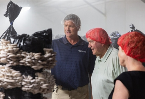 Perdue hears about labor needs in mushroom country