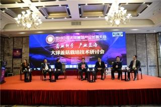 大球盖菇产业发展高峰论坛 (12)