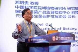 刘培贵:块菌(松露)文化与羊肚菌产业发展 (3)