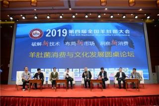 羊肚菌消费与文化发展圆桌论坛 (11)