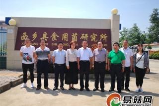 中国食用菌协会副会长何方明一行莅临西乡县食用菌研究所调研 ()