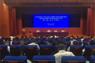 贵州省上半年食用菌种植规模达18亿棒 同比增长36% ()