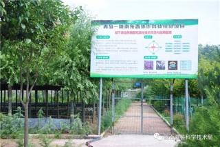 青岛科技局帮扶陇南徽县食用菌项目取得了阶段性成效 ()