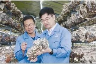 做给农民看 带着农民干:浙江省农业科学院蔡为明团队致力于食用菌育种、技术研发与推广 ()
